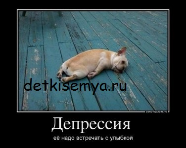 kak-razvivaetsya-plod-v-pervyj-trimestr-beremennosti