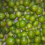 zelyonye-pomidory-na-zimu-recepty-s-foto-palchiki-oblizhesh