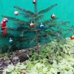 Какую елку купить искусственную или живую