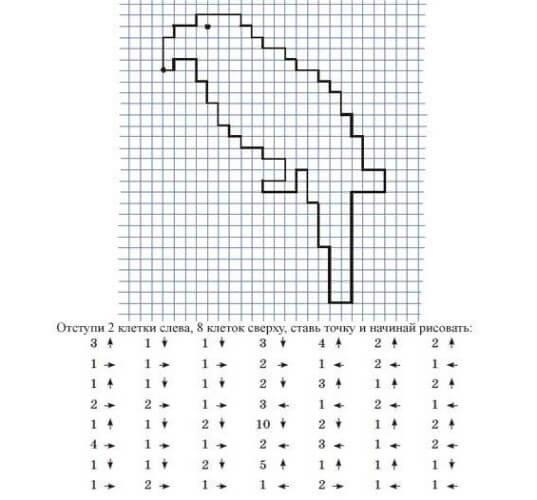 как нарисовать попугая по клеточкам
