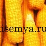 варить кукурузу в початках в кастрюле в молоке