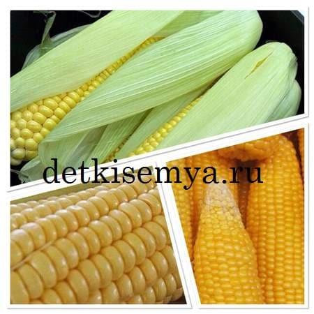 как варить кукурузу в початках в мультиварке