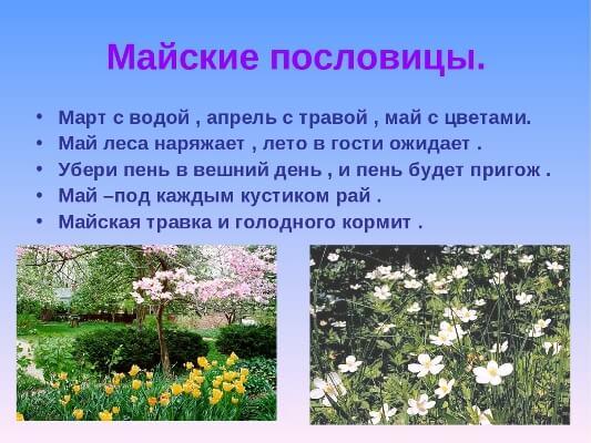 редкие загадки о весне