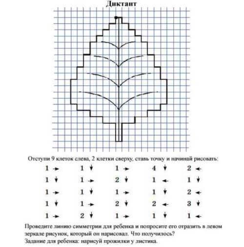 графический диктант осиновый лист