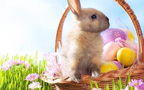 картинки для декупажа пасхальных яиц