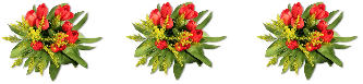 красивые цветы к празднику