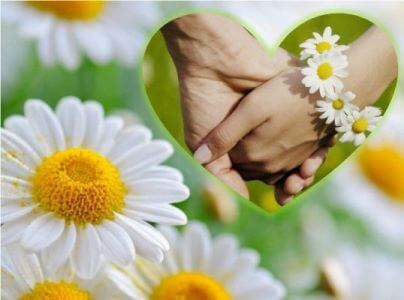 о дне семьи любви и верности