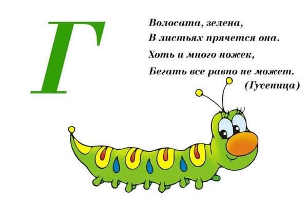 интересные загадки про гусеницу
