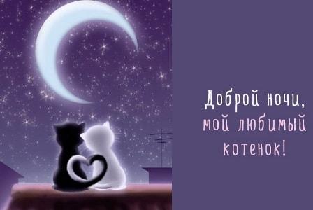 романтическое пожелание спокойной ночи девушке картинки