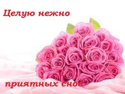 спокойной ночи девушке картинки роза