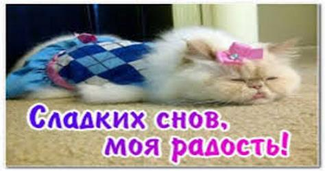 прикольные картинки с пожеланиями спокойной ночи девушке