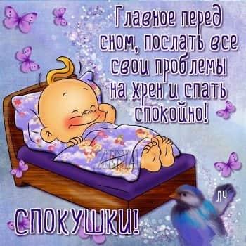 пожелание спокойной ночи девушке которая нравится картинки