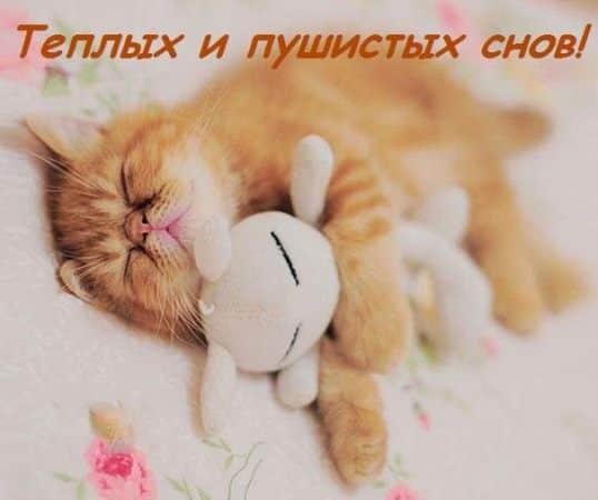 Картинки спокойной ночи