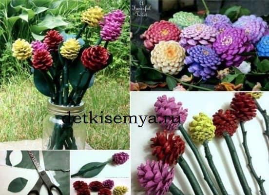 цветы в виде шишек