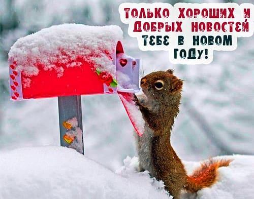 картинки поздравления с новым годом