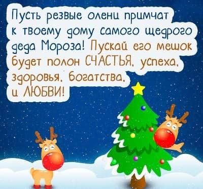 детские стихи про елку и новый год