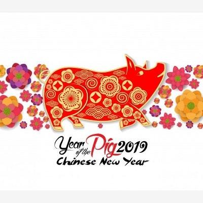 китайский новый год 2019 когда начинается и заканчивается во вьетнаме
