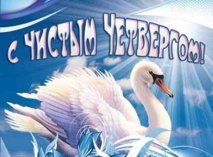 лебеди картинка