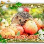 яблочный спас картинка с поздравлением