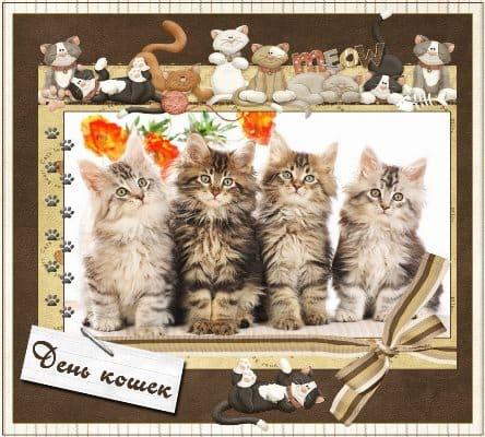 день кошек картинки анимация