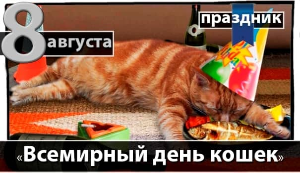 день кошек картинки скачать