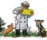 Прикольные, смешные стихи ко Дню Ветеринара (64 поздравления)