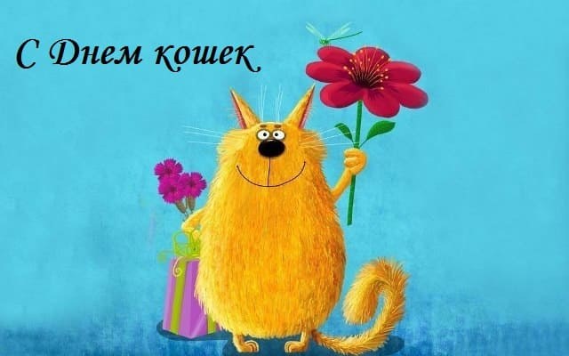 день кошек картинки 8 августа
