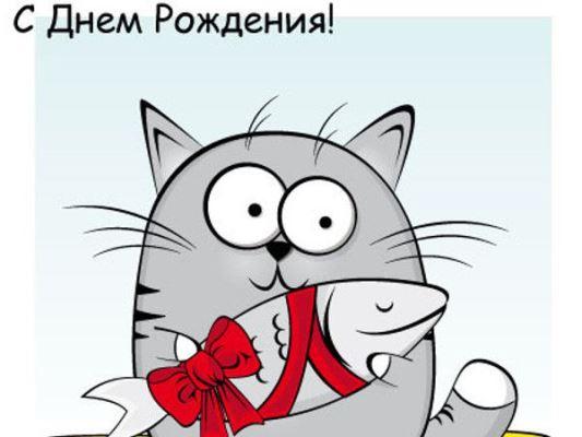 смешные открытки на всемирный день кошек