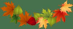 Загадки про осень и осенние месяцы
